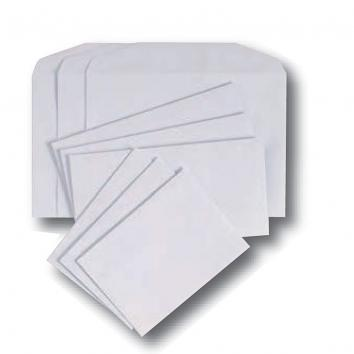 DL White S/S Envelopes