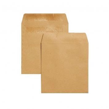 105x102mm Kraft S/S Plain Wage Envelopes